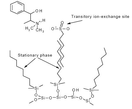 ionexchangesites