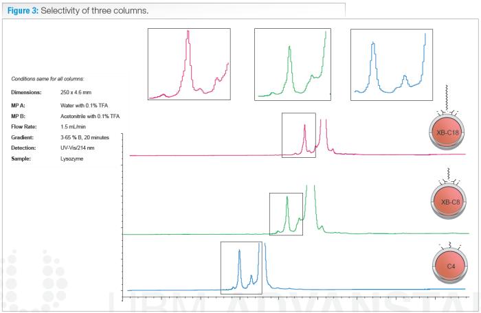 selectivity of 3 columns xb-c18 xb-c8 c4