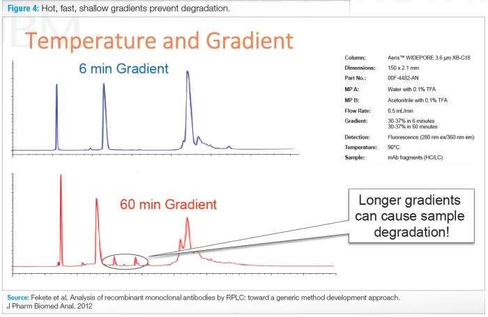 temperature and gradient in hplc columns