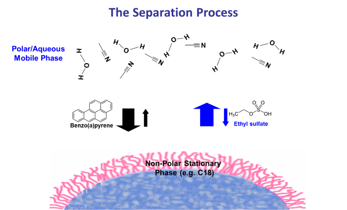 Seperation Process HPLC particle view