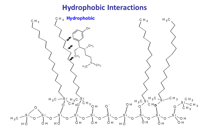 hydrophobic interaction in HPLC